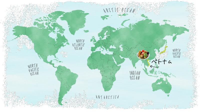 産地MAP_VegetablesMix_グリル野菜ミックス_ベトナム