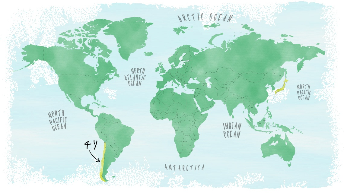 産地情報チリ