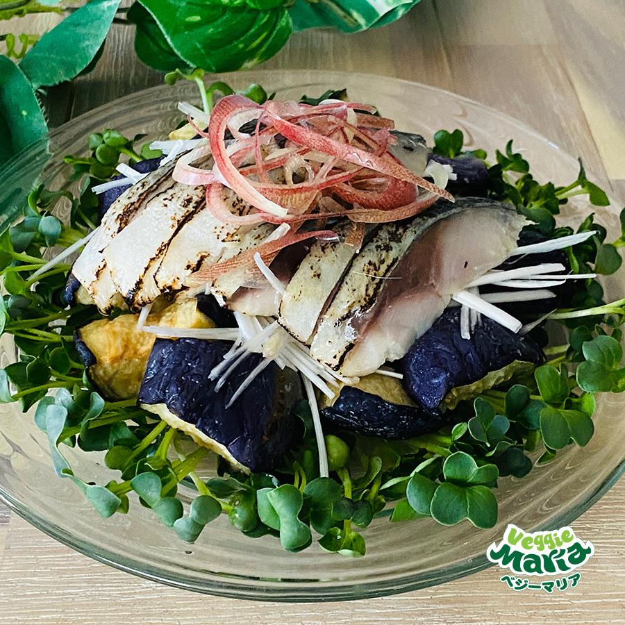 【ちょい足し】揚げなすとしめ鯖の香味サラダ